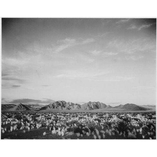 Adams - Death Valley 3
