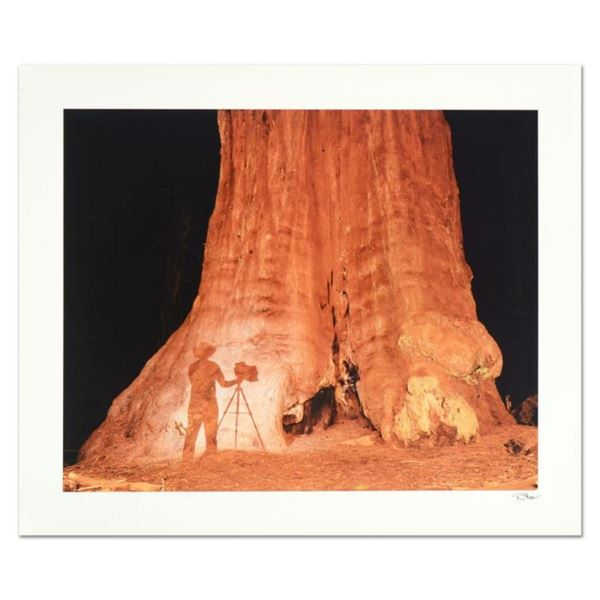 """Robert Sheer, """"Young Ansel at the Sequoias"""" Limited Edition Single Exposure Phot"""