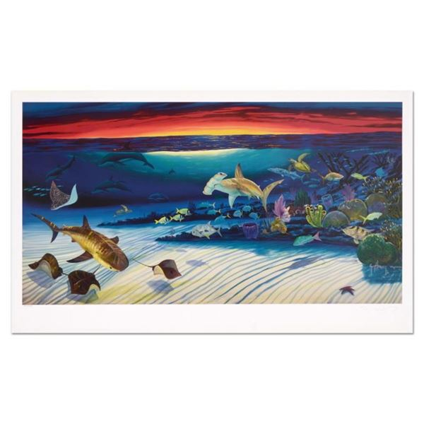 """Wyland, """"Sea Life Below"""" Limited Edition Lithograph, Numbered and Hand Signed wi"""