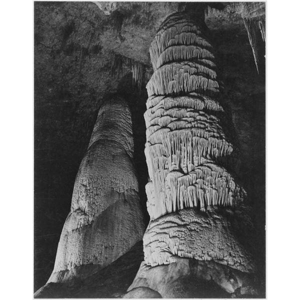 Adams - Carlsbad Caverns National Park New Mexico 3