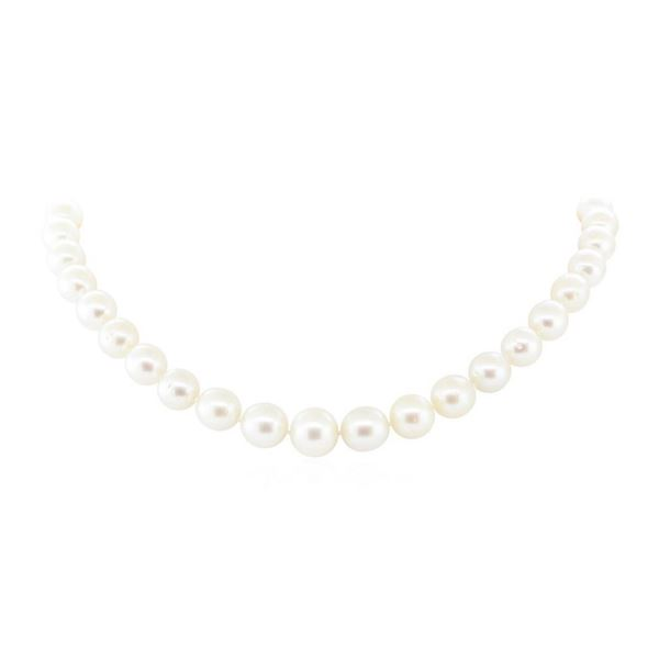 South Sea Pearl Necklace - 14KT White Gold