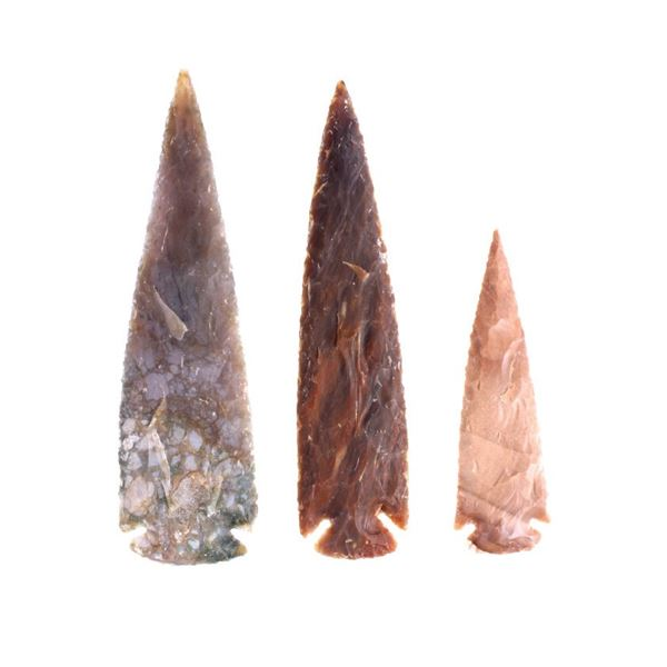 Collection of Lanceolate Hardin Projectile Points