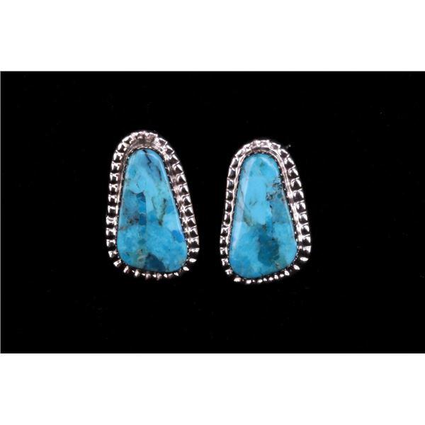 Signed Navajo Sterling & Sleeping Beauty Earrings