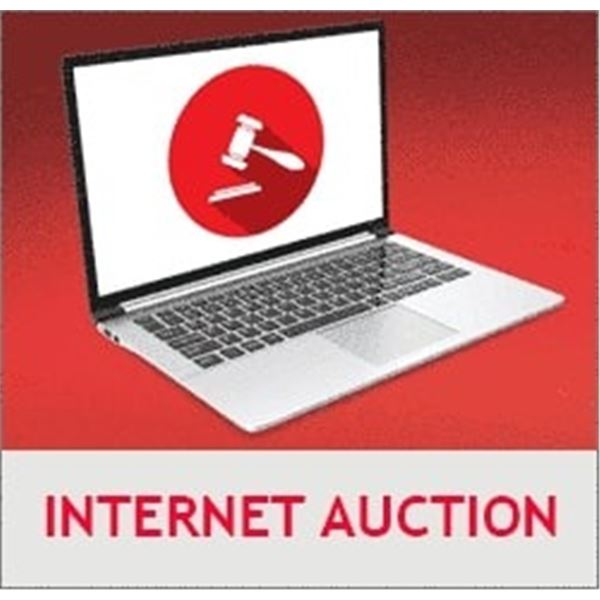 INTERNET AUCTION DAY