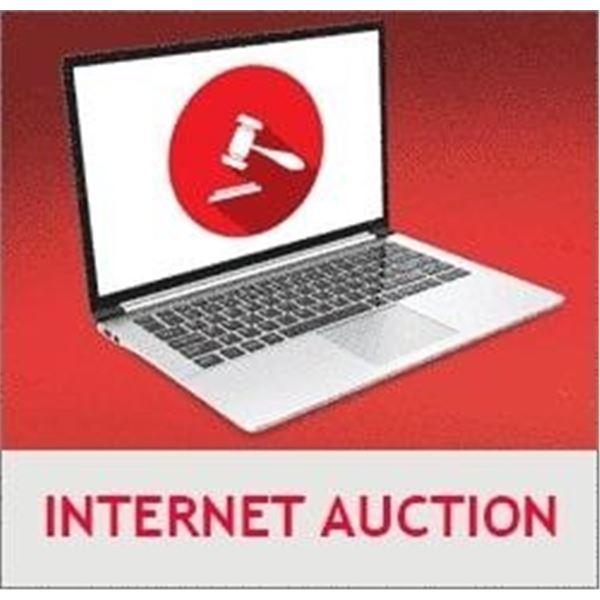 INTERNET AUCTION SESSION