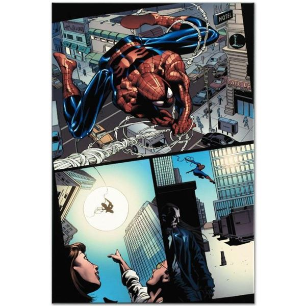 """Marvel Comics """"Amazing Spider-Man #526"""" Numbered Limited Edition Giclee on Canva"""