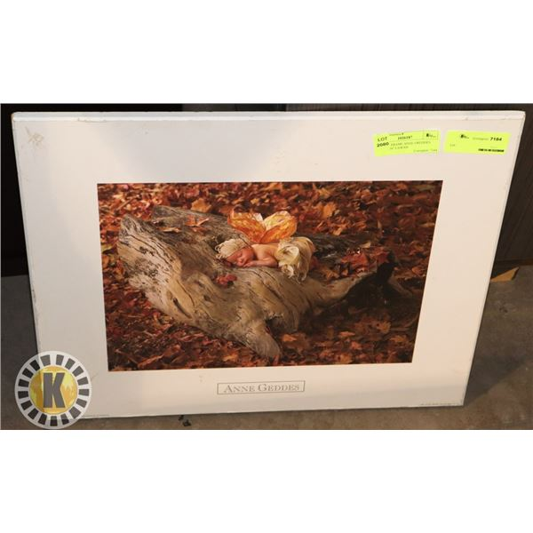 """PICTURE FRAME ANNE GREDDES 20""""X.5""""X16"""" LXWXH"""