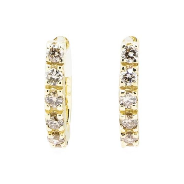 0.85 ctw Diamond Earrings - 14KT Yellow Gold
