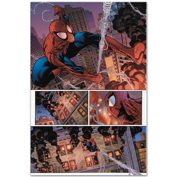 "Marvel Comics ""The Amazing Spider-Man #596"" Numbered Limited Edition Giclee on C"