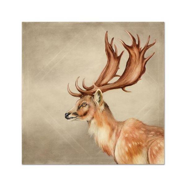 Fallow Deer of Europe by Katon Original