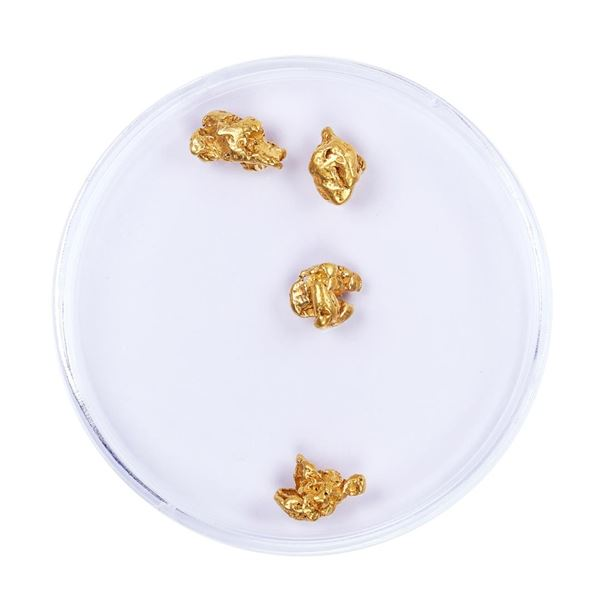 Lot of Gold Nuggets 2.69 grams Total Weight