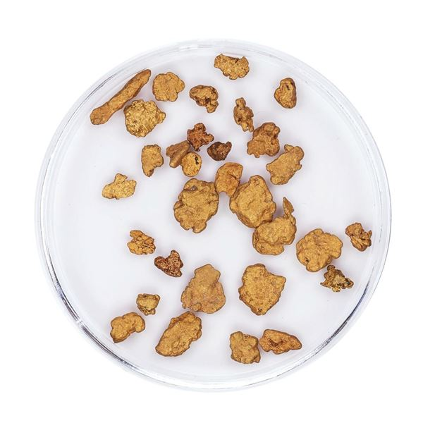 Lot of Gold Nuggets 3.93 Grams Total Weight