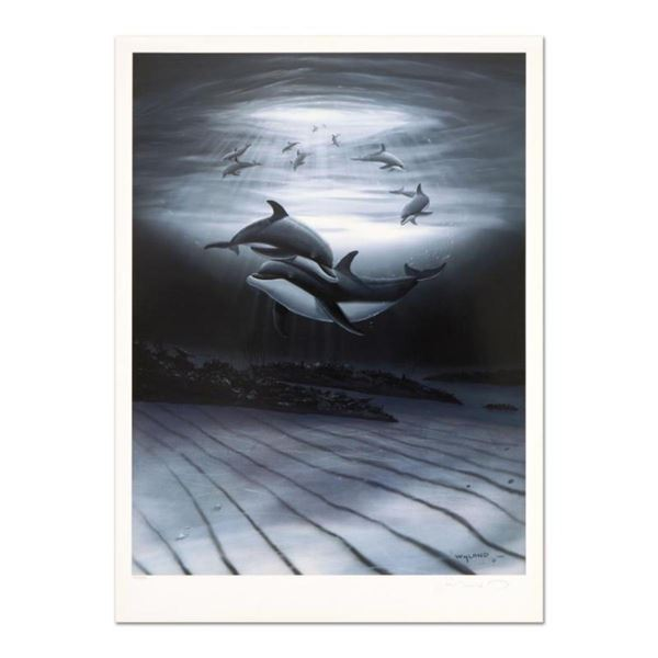 """Wyland, """"Dolphin Affection"""" Limited Edition Lithograph, Numbered and Hand Signed with Certificate of"""