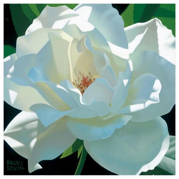 "Brian Davis, ""Rose In The Shadows"" Limited Edition Giclee on Canvas, Numbered an"