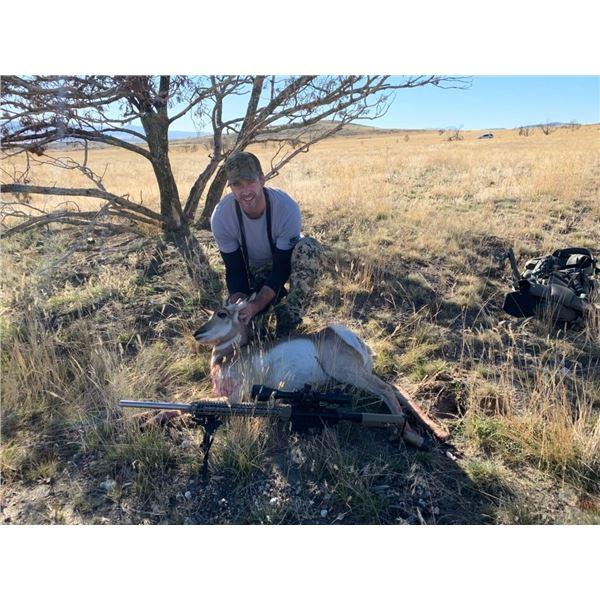 Utah DIY Antelope Doe Hunt