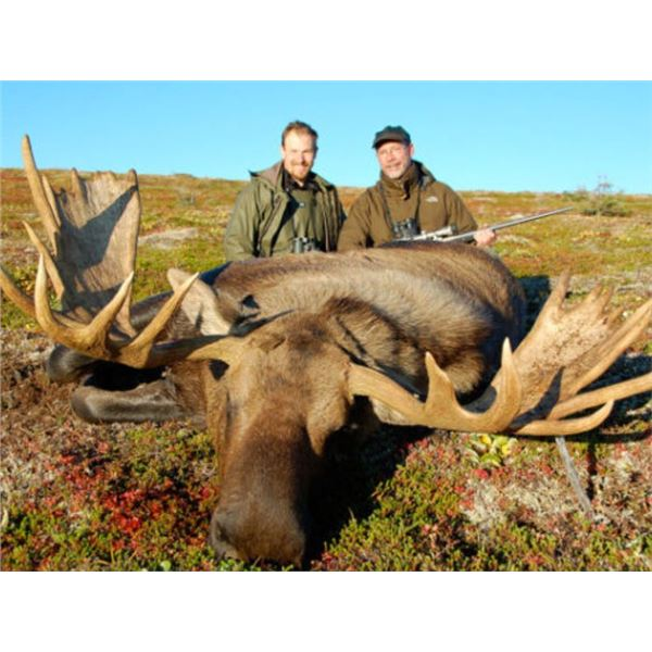 Alaska Moose Hunt Drop Camp For 2