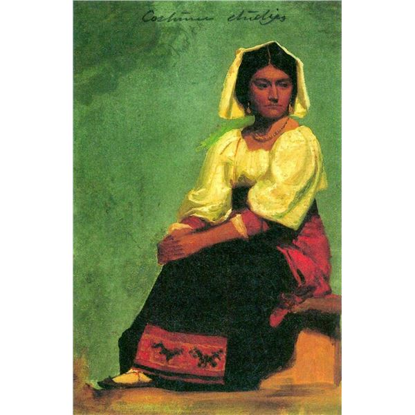 Costume Study of a Seated Woman by Albert Bierstadt