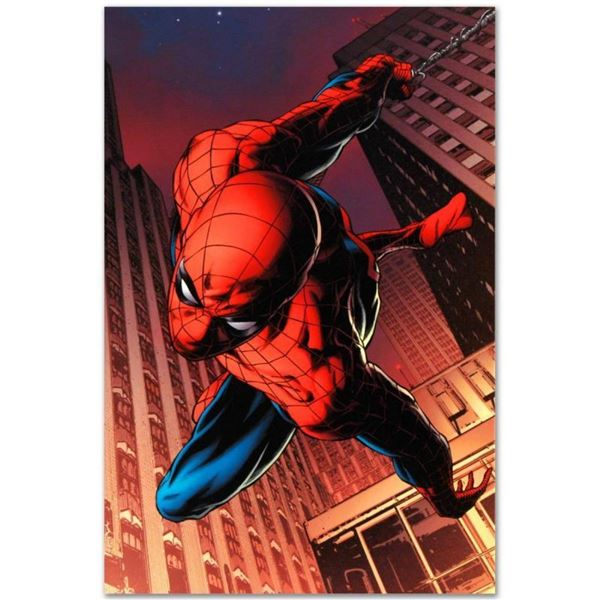 """Marvel Comics """"Amazing Spider-Man #641"""" Numbered Limited Edition Giclee on Canva"""