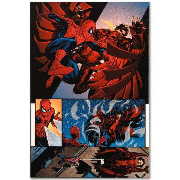 """Marvel Comics """"The Amazing Spider-Man #594"""" Numbered Limited Edition Giclee on C"""