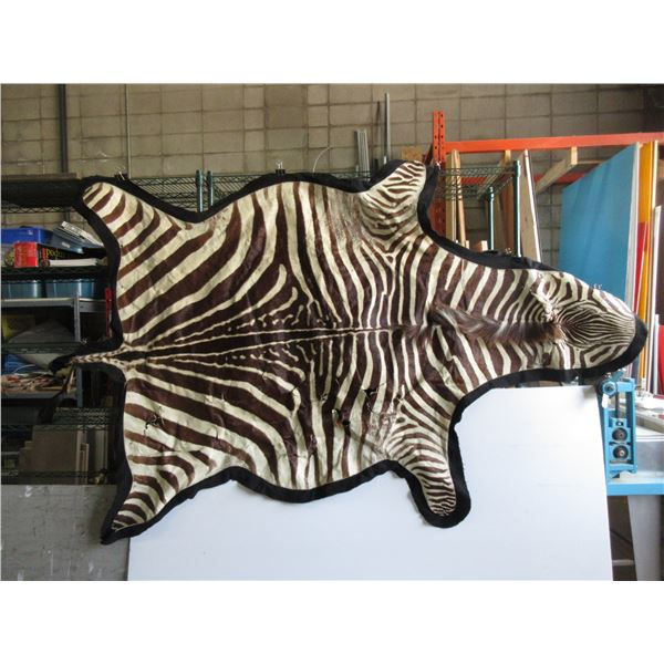 Zebra Hide on Backing