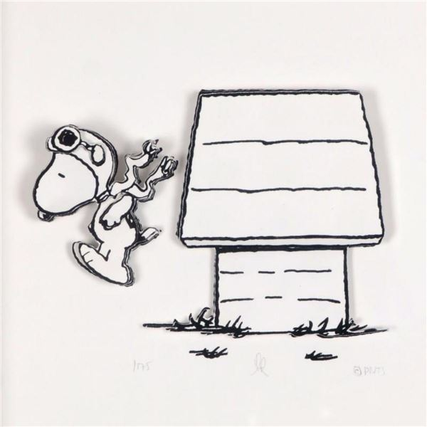 """Peanuts, """"Jump Right In"""" Hand Numbered Limited Edition 3D Decoupage with Certifi"""