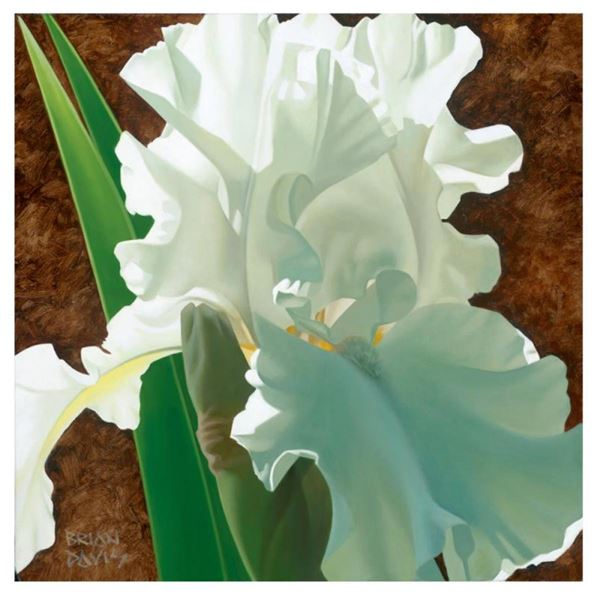 """Brian Davis, """"Solitary White Iris"""" Limited Edition Giclee on Canvas, Numbered an"""