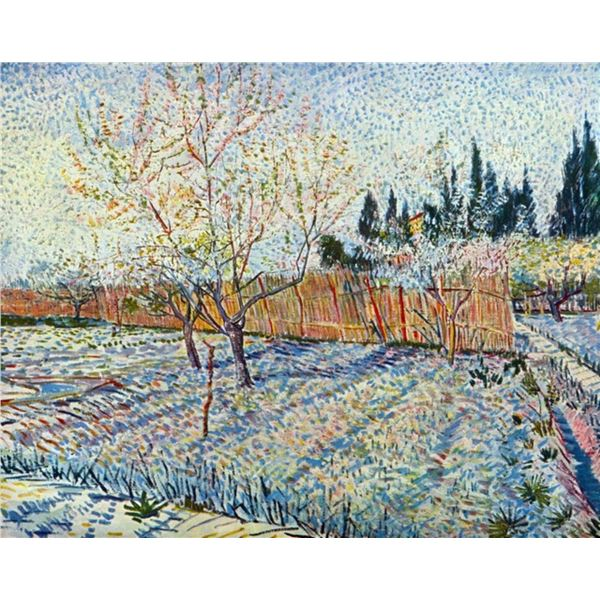Van Gogh - Orchard With Cypress