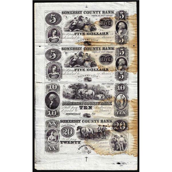 Uncut Sheet of 1800's $5/5/10/20 Somerset County Bank Somerville, NJ Obsolete Notes