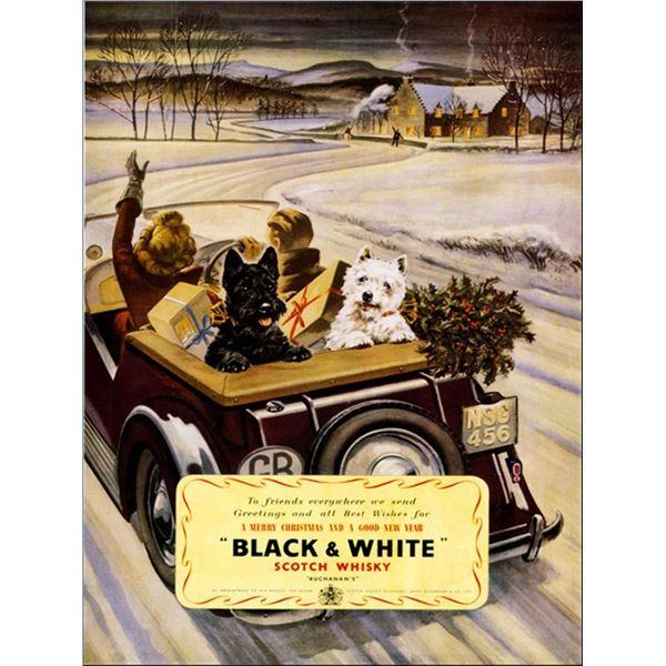 Anonymous - Black & White Whisky
