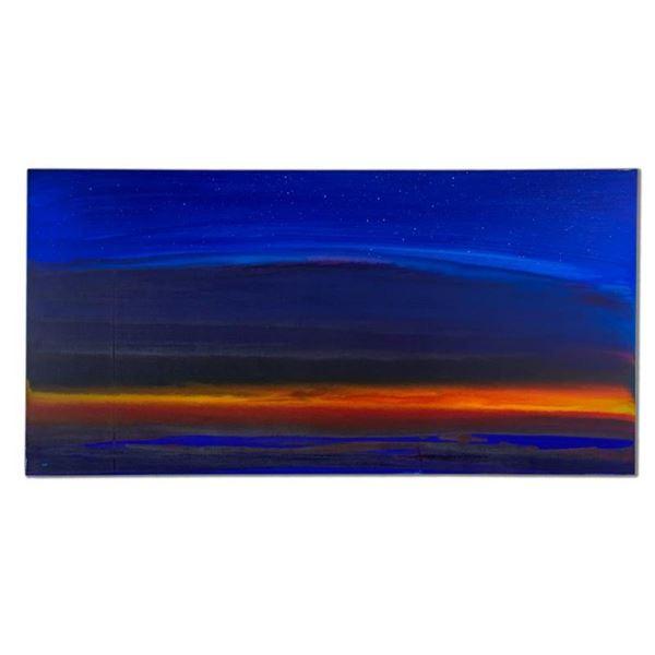 Night Sky by Wyland Original