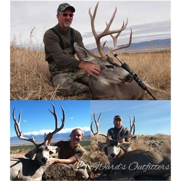 Mule Deer Hunt in Arizona