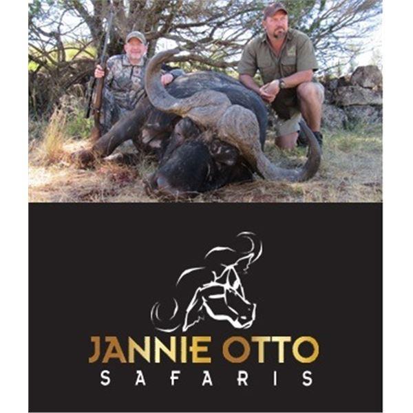 Trophy Cape Buffalo Bull Hunt in South Africa