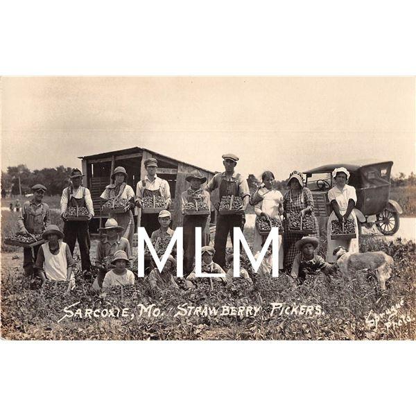 Strawberry Pickers Sarcoxie, Missouri Sprague Photo Postcard