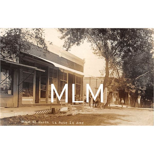 Main Street Store Fronts La Rose, Illinois Photo Postcard