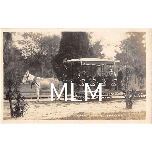 Rapid Transit Donkey Drawn Trolley Magnolio Springs, Florida Photo Postcard