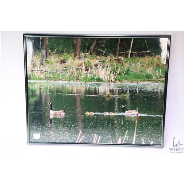 Three framed wilderness coloured photographs, all signed and dated by artist Ben Gun (?). Not Availa