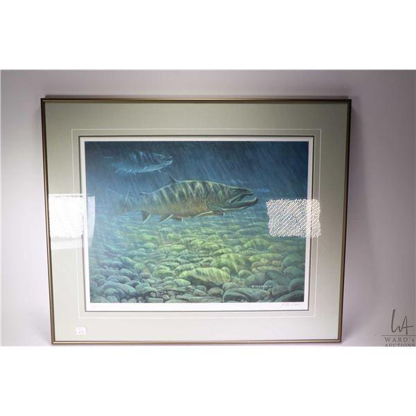 Framed limited edition print of salmon underwater, pencil signed by artist Rick Berg 155/225. Not Av
