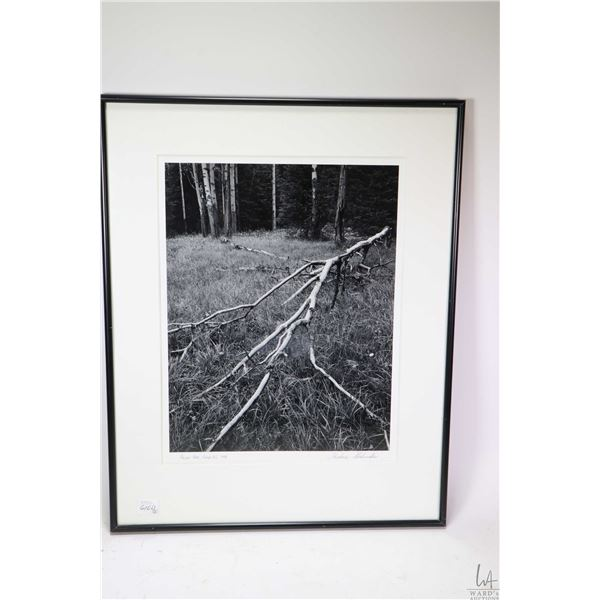 """Three framed photographs including prairie skyline, black and white """"Fallen Tree, Field B.C"""" by Theo"""