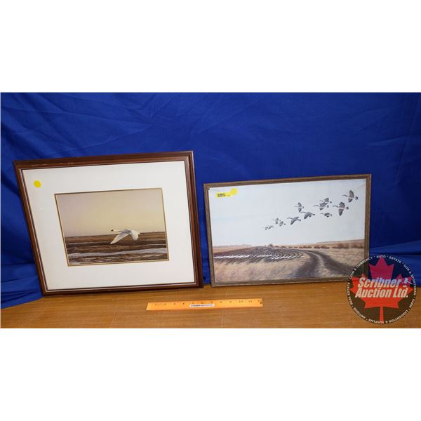 2 Framed Prints of Geese (12x18) (15x19)