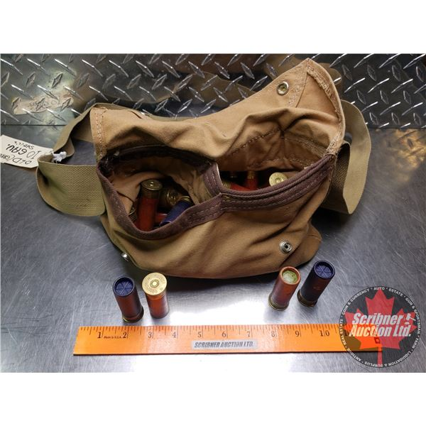 AMMO: Large Variety of Brands 10ga Canvas Bag (Total 38)