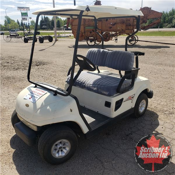 2006 FYM Motobishi Electric Golf Cart (w/Charger) (Runs & Drives - Good Batteries, Steering Issues)