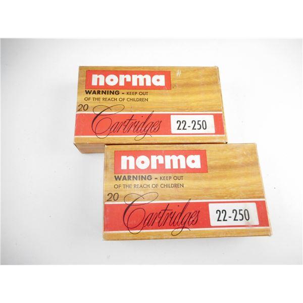 22-250 NORMA AMMO
