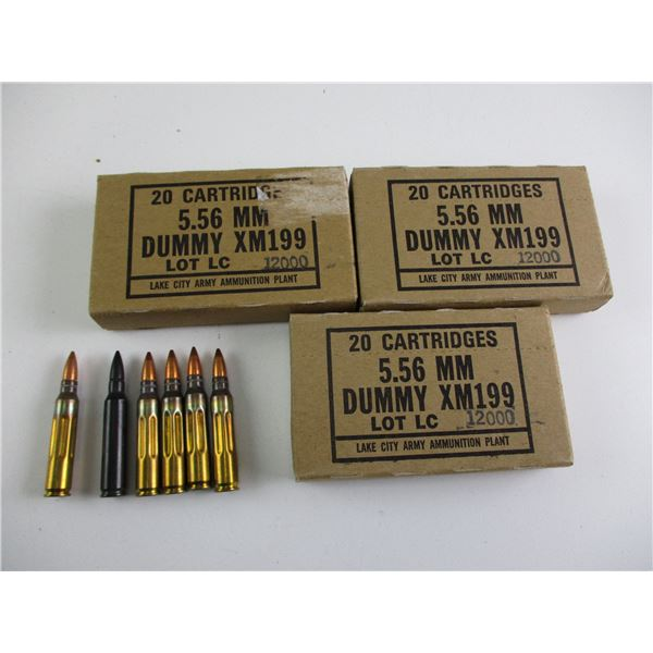 5.56MM, US MILITARY DUMMY RNDS
