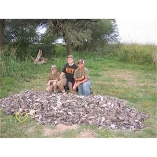 Dove Hunt by HP Wingshooting Adventures