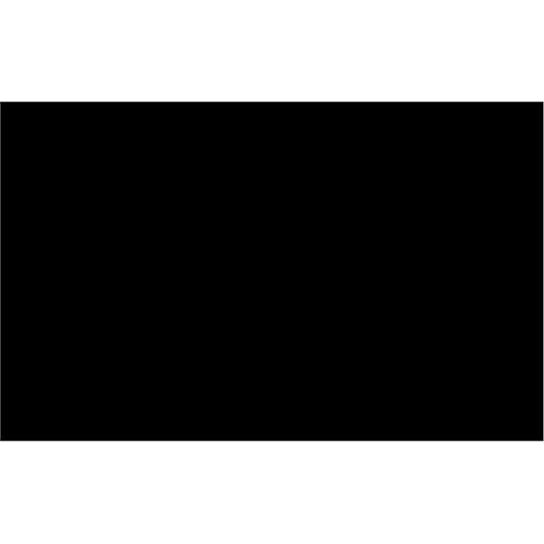 BOOTLEG 5.56 NITRIDE BCG COMPLETE
