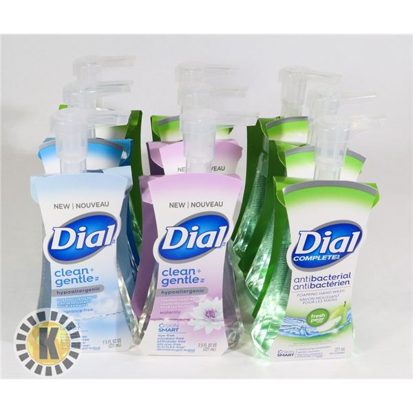 BAG OF ASSORTED DIAL COMPLETE HAND WASH