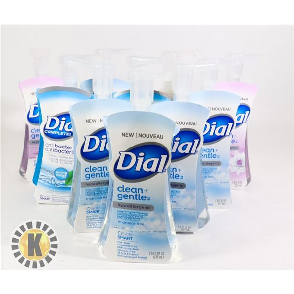 BAG ASSORTED DIAL COMPLETE HAND WASH