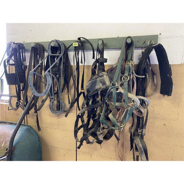 JOB LOT - HORSE TACK & ACCESSORIES