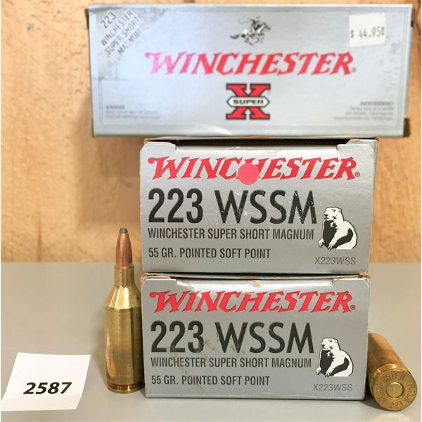 AMMO: 60X WINCHESTER 223 WSSM 55GR SP