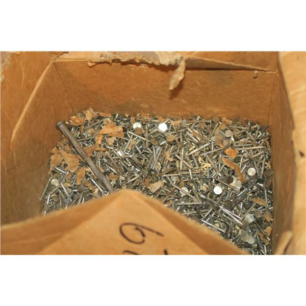Lot of nails, misc. sizes